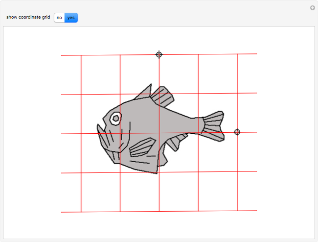 D'Arcy Thompson's Affine Fish Transformations - Wolfram