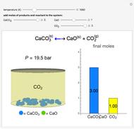 Heterogeneous Chemical Equilibrium with Calcium Carbonate
