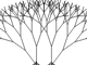 Tree Bender